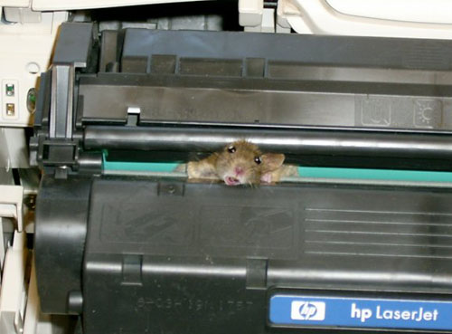 Laser Printer Comes with Built-in Mouse
